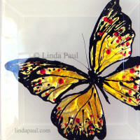 orange with red spots butterfly art tile