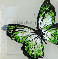 green black and white butterfly art painting