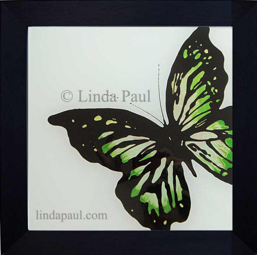 green butterfly framed art