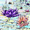 water lilies accent tile