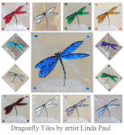 dragonfly glass tile inserts and accents